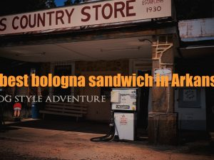 Roadtrip to the Hollis Old Country Store in Plainview, Arkansas for the Best Bologna Sandwich